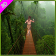 Jungle Free Run Game Icon
