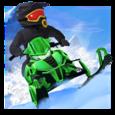 Arctic Cat® Snowmobile Racing Icon