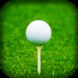 Direct Golf Gear Icon