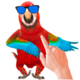 Tickle Talking Parrot Icon