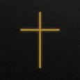 Biblia Diaria Icon