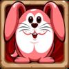 Rescue The Bunny Icon