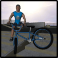 BMX Freestyle Extreme 3D Icon