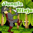 Jungle Ninja Icon