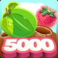 Berry 5000 Icon