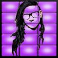 Skrillex Dubstep Music Pad Icon