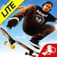 Skateboard Party 3 Lite Greg Icon