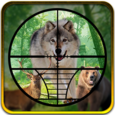 hunting Jungle Animals Icon