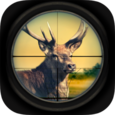 Deer Sniper: Bullet Hunter 3D Icon