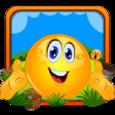 Cover Orange Defender Icon