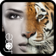 InstaFace:face eyes morph Icon