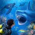 Sharks VR Icon