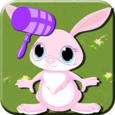 Funny Bunny Thumps Icon