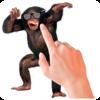 Tickle Talking Monkey Icon