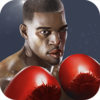 Punch Boxing 3D Icon