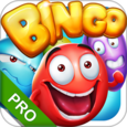 Bingo - Pro Bingo Crush™ Icon