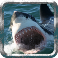 Deadly Shark: Marine Simulator Icon