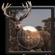 Forest Sniper – Animals Hunter Icon