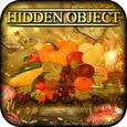 Hidden Object - Autumn Harvest Icon