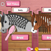 Horse Care - Mane Braiding Icon