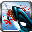 Killer Whale Simulator 3D Icon
