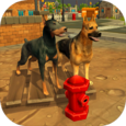 Doggy Dog World Icon