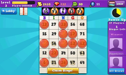 Bingo Dreams