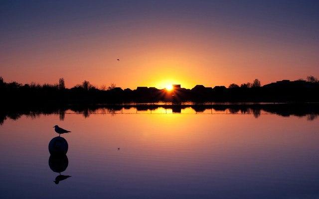 Lake Photo