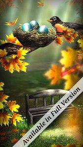 Season Zen Free