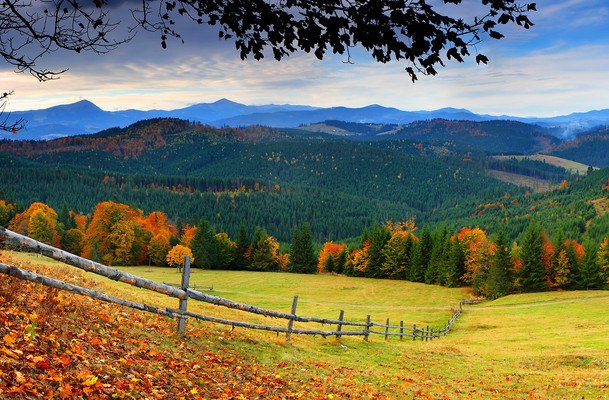 Wonderful Autumn View