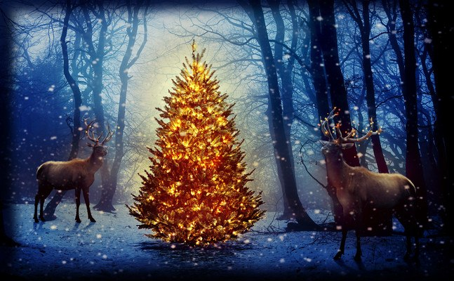 Reindeer Around Christmas Tree