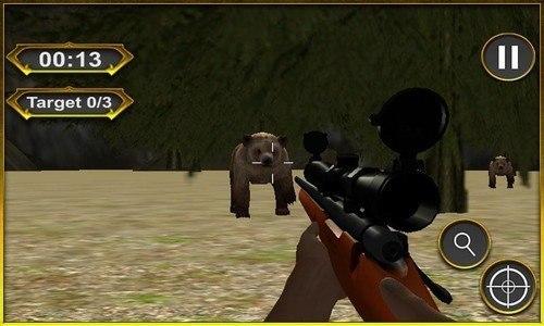 hunting Jungle Animals