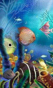 Aquarium Live Wallpaper (free)