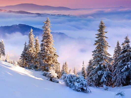 Amazing Winter Alps