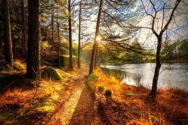 Stunning Autumn Scenery