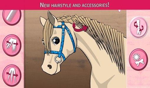 Horse Care - Mane Braiding