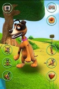 Talking Dog Crazy