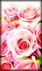 Roses Live Wallpaper