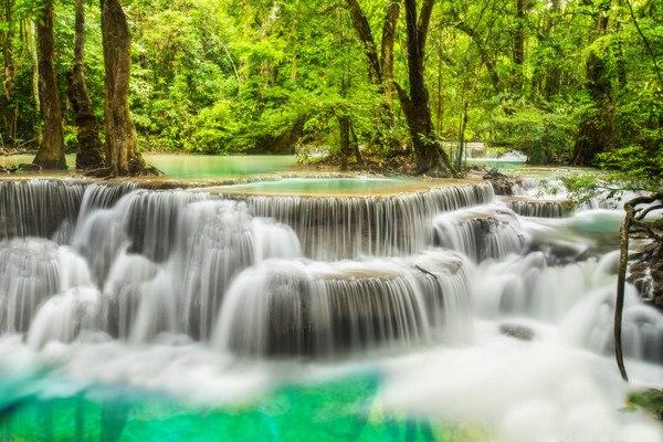 Beautiful Forest Waterfall
