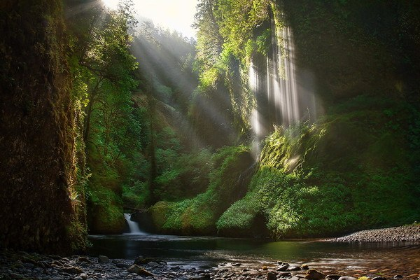 Waterfall Ravine