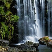 Tokyo Garden Beautiful Waterfall