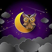 Owl And Moon Digital Art