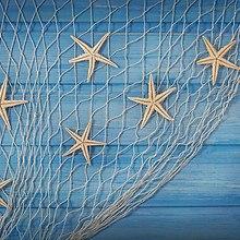 Starfish In Netting
