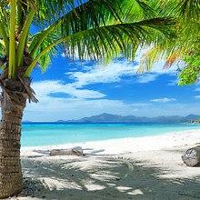 Sun Soaked Paradise