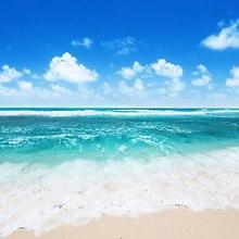 Summertime Ocean