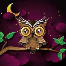 Owl Digital Art