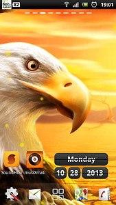 live eagle wallpaper