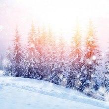 Winter Glimmer