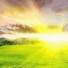 Bright Valley