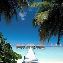 Island Water Bungalows